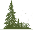 Canadian Istitute of Forestry